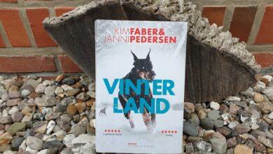 Photo of Vinterland